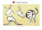 animal23 copy