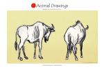 animal24 copy